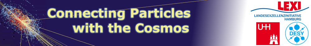 Cluster of Excellence: Connecting Particles with the Cosmos